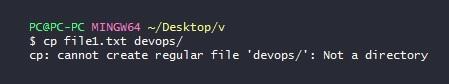 recursive copy in linux